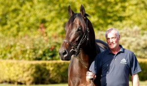 POET'S WORD arrives at the Nunnery Stud
