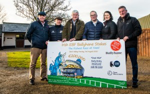 Naas Racecourse Announce The Ballyhane Stud Irish EBF Will Be Richest Race Run At The Course In 2020 18/2/2020